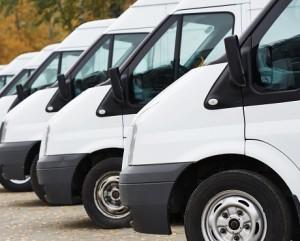 Line of white vans